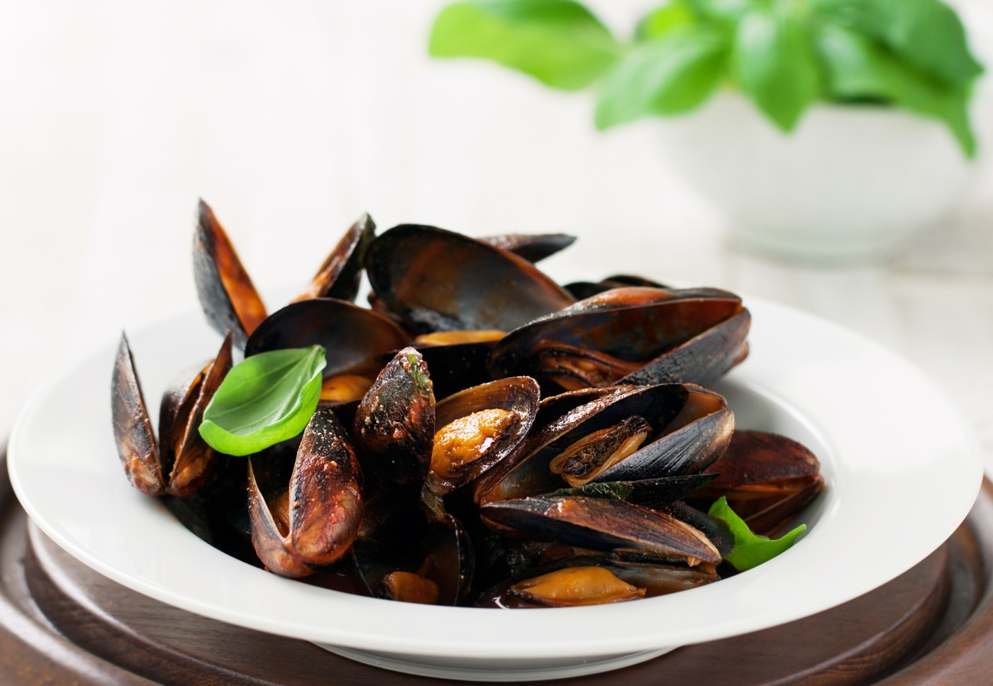 Homemade cooked mussels with garlic, tomato sauce, italian herbs, white wine and fresh basil in a plate, closeup